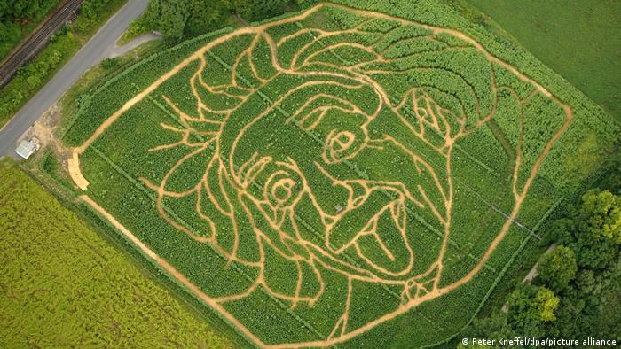 Deutschland Einstein im Maisfeld bei Utting