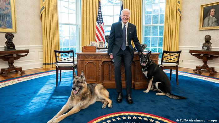 Joe Biden in the Oval Office with Champ and Major