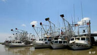 Idled shrimp boats sit in port at Louisiana