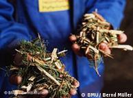 O mais conhecido exemplo de biomassa: folhas e galhos transformados em briquetes