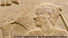 5AE-S5-E5-2000-5 Sakkara, Grab Mereruka, Mutter Sakkara - Saqqara (Mittelaegypten), Grab des Wesirs Mereruka (Mastaba, Altes Reich, Anfang 6. Dynastie, um 2330 v.Chr.). - Die Mutter Mererukas, an einer Lotusbluete riechend. - Relief in der Kultkammer, Hoehe ca.1 m. Kalkstein. E: Sakkara / Tomb of Mereruka / Mother Sakkara - Saqqara (central Egypt), Tomb of Vizir Mereruka (Mastaba, Old Kingdom, beginning of 6th dynasty, c. 2330 B.C.). - The mother of Mereruka, smelling a lotus blossom. - Relief in the cult chamber, height: ca. 1 m. Limestone.