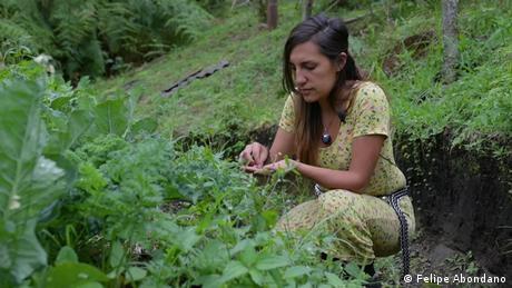 DW Sendung Eco Latinoamerica   Schutz von alten Samen in Kolumbien
