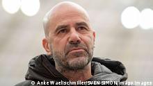 Bundesliga - Hertha BSC Berlin v Bayer Leverkusen | Trainer Peter Bosz (LEV)