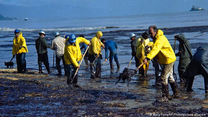 A forestry crew cleans oil from the sea in Santa Barbara in 1969