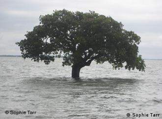حوراز علاقے میں سیلابی پانی