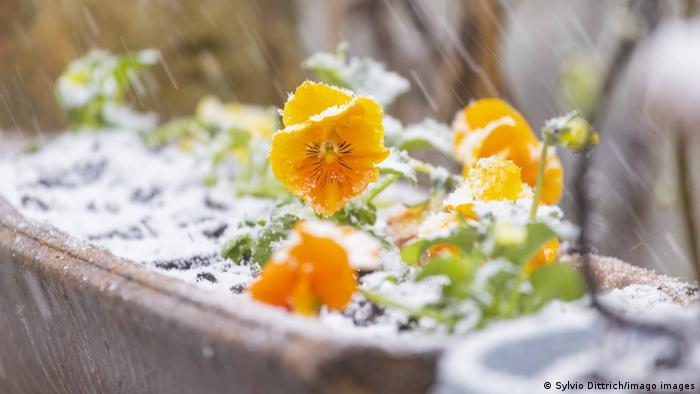 BdTD Deutschland Wintereinbruch im April