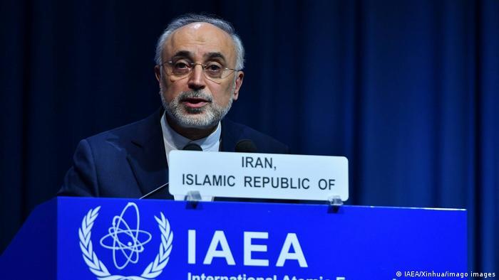Österreich IAEO-Konferenz Ali Akbar Salehi - Leiter der iranischen Atomenergiebehörde