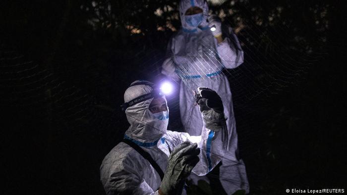 این پروژه که بودجه آن بر عهده ژاپن است در سه سال آینده در دانشگاه فیلیپین در لوس بانوس پی گرفته خواهد شد. پژوهشگران امید دارند که در آن جا بتوانند ویروسهای کرونا را با در نظر گرفتن عواملی مانند آب و هوا، دما و انتقال به انسان بهتر تجزیه و تحلیل کنند.