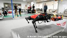 China Technologie Alpha Dog Roboter Hund