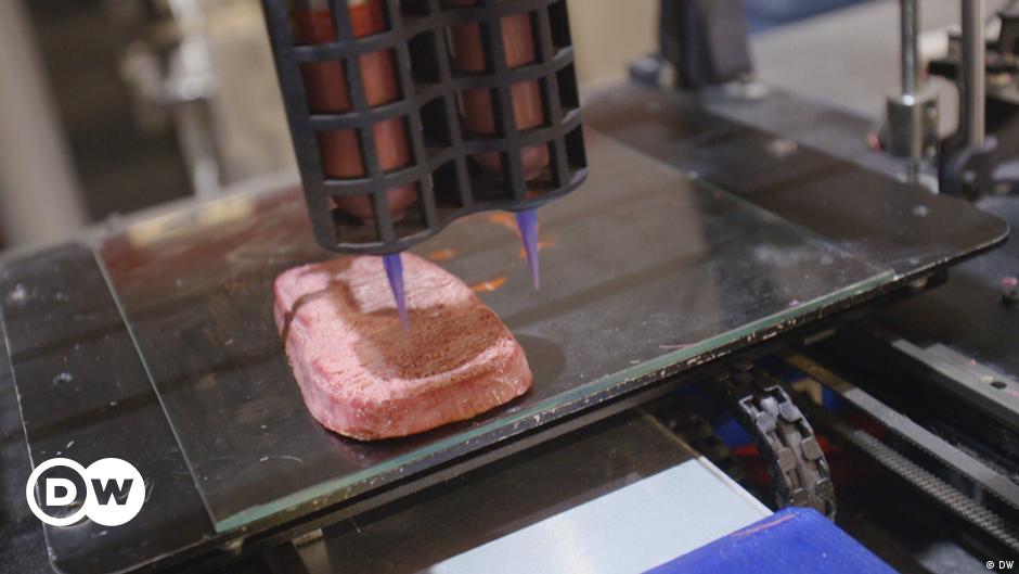 Meat substitute - Vegan steak from a 3D printer
