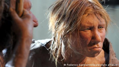 A Neanderthal