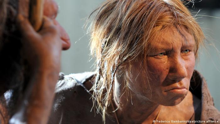 Reconstituição de espécimes de Neandertal