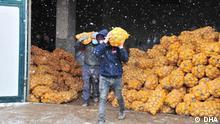 Türkei l Staat kauft von den Bauern Kartoffeln und Zwiebeln.