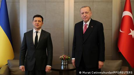 Volodymyr Zelenskyy and Recep Tayyip Erdogan standing for an official photo in Istanbul