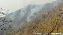 Feuer in Himalaya Wälder Foto: Forest Deptt, Uttarakhand