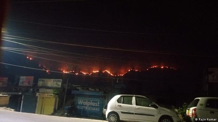 Indien | Feuer in den Wäldern des Himalaya