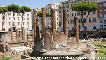 Italien Rom | Tempelbezirk Largo di Torre Argentina