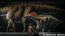 China | Dinosaurierausstellung in Guangzhou | Sauropoden
