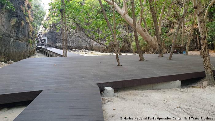 A boardwalk built around trees on the Phi Phi Leh island