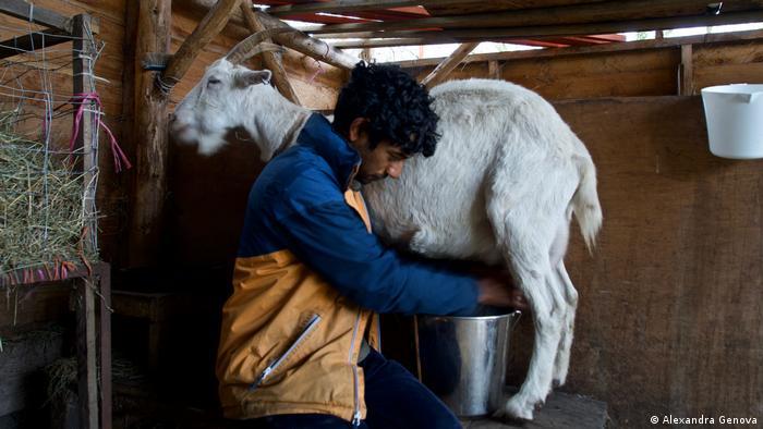 Guru Thiru, Street Goat, Bristol, UK