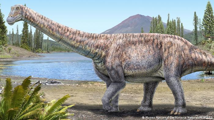 Arackar Licanantay Dinosaurier Atacama Wüste