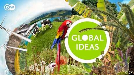 A photoshopped image of a parrot, wind turbines, cows, plants and solar panels