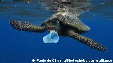 Ozean l Plastik, Vermüllung der Meere