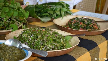 Lokale Gerichte, die mit essbaren Wildpflanzen zubereitet werden, nämlich Bat Pyllon und Jali