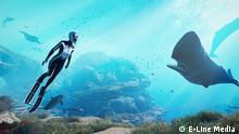 Beyond-Blue-05 Beschreibung: Eine Szene aus dem Beyond Blue Videospiel mit zwei Walen. Rechte: © E-Line Media (Wir haben die Nutzungserlaubnis per email von E-Line Media)