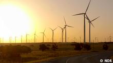 Titel: GLOD USA Texas Windräder Beschreibung: Im Ölstaat Texas boomt die Windkraft. Die erdölbegeisterten Texaner staunen über die Energiewende vor ihrer Haustür. Rechte: sind NUR für diesen Beitrag gegeben! Copyright: NDR