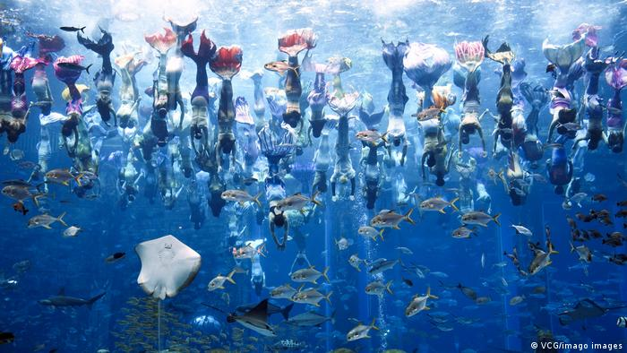 BdTD China Guinness-Weltrekord für die größte Unterwasser-Nixen-Show