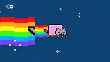 Katzen-Meme aus DW-TV