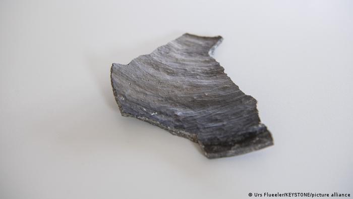 Los trabajos en la tubería revelaron unos 30 pilotes de madera prehistóricos y cinco piezas de cerámica.