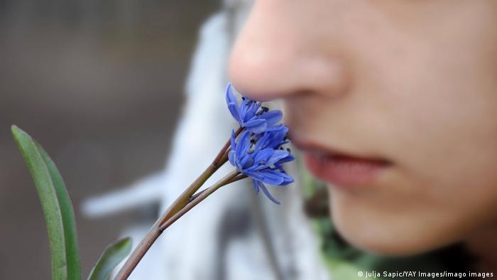 Parte de um rosto cheirando uma flor azul
