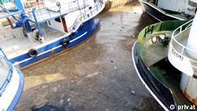 Meer Verschmutzung Türkei 2 experten Bilder, Copyrıght: Privat und 2 Bilder von Murat Kurum, Vorsitzt der türkischen Fischer Verein, Rechte frei.