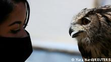 Falconer Giovanna Piccolo performs with her Eurasian eagle-owl at 'Roma World' theme park, during the coronavirus disease (COVID-19) pandemic, in Rome, Italy May 9, 2021. REUTERS/Yara Nardi