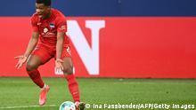 Bundesliga I Schalke 04 v Hertha BSC
