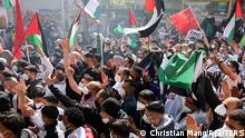 A large crowd of protesters wave Palestinian flags in Berlin
