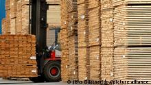 Holzgroßlager im Großsägewerk I KNT Klausner Nordic Timber