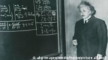 Einstein, Albert Physiker; 1879–1955. Foto, undat.