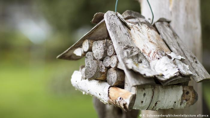 Wooden house as shelter for bees