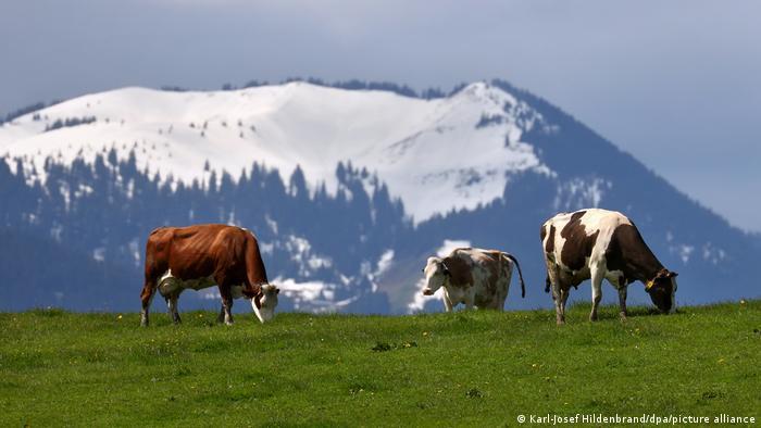 En Alemania hay cada vez montañas más altas y llanuras más bajas.