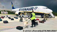Eine Sicherheitskraft Spürhund inspiziert mit einem Spürhund das Gepäck eines Ryanair-Flugzeuges. Belarussische Behörden hatten das Flugzeug auf dem Weg von Athen nach Vilnius zur Landung gebracht. An Bord der Maschine war nach Angaben des Menschenrechtszentrums Wesna auch der vom belarussischen Machthaber Lukaschenko international gesuchte Blogger Protassewitsch, der demnach in Minsk festgenommen wurde. +++ dpa-Bildfunk +++