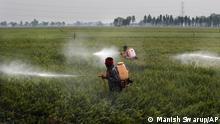 Archivbild I Indien I Protest von Bauern und Farmern