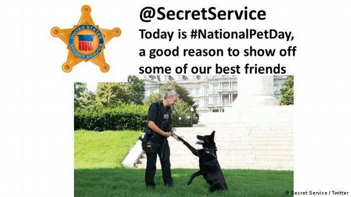 A screenshot of National Pet Day tweet by US Secret Service