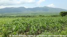 *** Bitte nur in Zusammenhang mit der Berichterstattung verwenden *** African Army warm hits Southern Ethiopia : Hawssa, Ethiopia