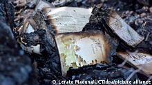 Südafrika Großfeuer zerstört Uni-Bibliothek in Kapstadt