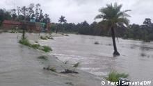 Super cyclone Yaas, with wind speed racing from 120-140 kmph, battered the country's eastern coast of West Bengal and Orissa on Wednesday, inflicting large scale damages to human habitats and farmlands. Place: West Bengal Flooded areas in Sundarban