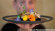 Frankreich |Restaurant Inoveat serviert Gerichte aus Mehlwürmern
