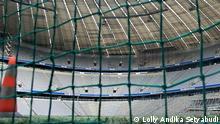 Rasen in der Allianz Arena, München